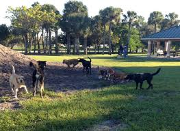 DOG VACAY-CANINE BLISS!VACATION BUSTERS! – BarkUpToday!