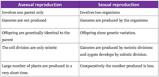 Venn Diagram Of Asexual And Sexual Reproduction Venn Diagram Of Asexual And Sexual Reproduction Resume