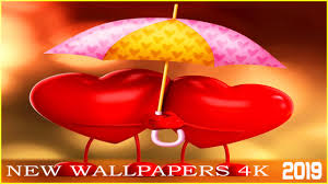 Love Wallpapers Hd I 4k Backgrounds 2019 For Android Apk