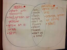 Pumpkin Venn Diagram Tons Of Fun With K And 1