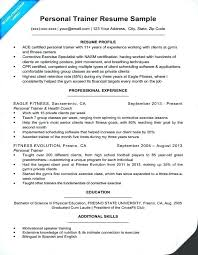 Personal Resume Examples Airexpresscarrier Com