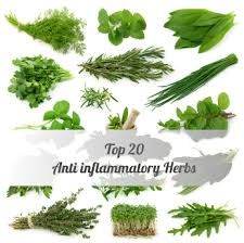 herbs for inflammation and swelling