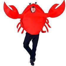 Crab Dog Halloween Costume Mascotcostumes