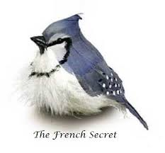 French Feathers Home Decor And Accessories Christmas 100 Blue Jay Bird Ornament Decoration Feather Tree 86