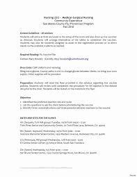 Student Nurse Resume Template Free Rn Resume Format Fresh New New