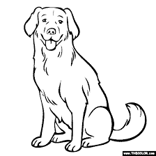 Small Picture Labrador Coloring Page Yellow Lab Chocolate Lab Gallery glass