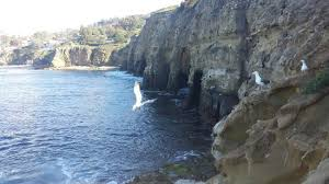 the cave la jolla 2018 all you need to know before you go with photos tripadvisor