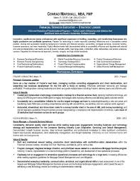 Classy Management Consultant Resume Summary For Senior It Sample