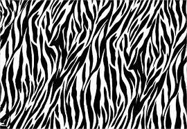 Zebra Patterns Unique 48 Zebra Patterns PSD Vector EPS PNG Format Download Free