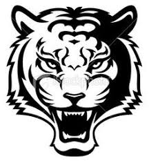 tiger face growling drawing. Interesting Drawing Displaying 18 Gallery Images For Tiger Head Roar Drawing Inside Face Growling Drawing T