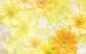 Free Yellow Spring Flowers computer ...
