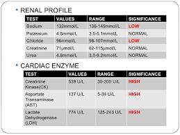 Lab Values Renal Profile And Cardiac Enzymes Nursing