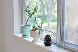 Cool Bathroom Window Sill Ideas Images Ideas