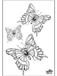 Farfalla 5 Insetti