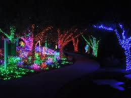 Holiday Happenings Around Pinellas County Diversions