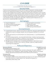 Immigration Consultant Resume Professional Political Consultant Templates To Showcase Your