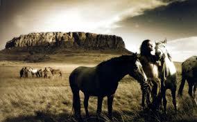 1495647 Wallpaper For Desktop Horse Animal Tokkorocom