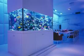 home aquarium design. view in gallery reef saltwater aquarium by okeanos group home design