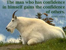 Goat Quotes Amazing Goat Quotes Photo