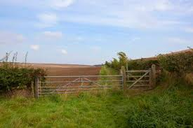 metal farm fence. A Metal Farm Gate And Fence On Country Bridleway With Cultivated Field  Under Blue I