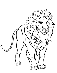 Small Picture Free Lion Coloring Page