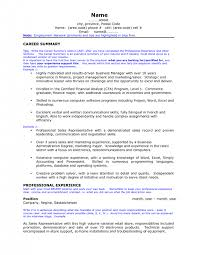 cover letter resume resume career overview example ravishing career summary professional experience images frompo cover letterresume resume career overview example