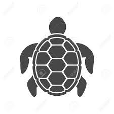 Turtle Icon Flat Graphic Design Illustration