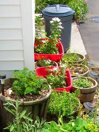 creating a container herb garden frugal upstate simple ideas