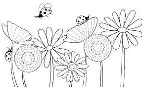 Disegno Di Fiori E Coccinelle Da Stampare E Colorare Per Bambini