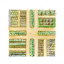 Kitchen Garden Seeds Kitchen Garden Designs Soil Before Seeds
