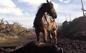 """Résultat de recherche d'images pour """"cheval de guerre photo"""""""