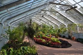 conservatory at birmingham botanical gardens