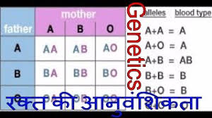 Category Blood Group Chart