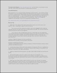 Best Resume Format For Software Developer Professional Summary Resume Examples For Software Developer New
