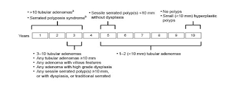 Colon Polyp Size Chart Colorectal Neoplasia