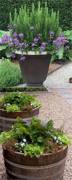 Container Vegetable Gardening Texas  Home Outdoor DecorationContainer Garden Design Plans