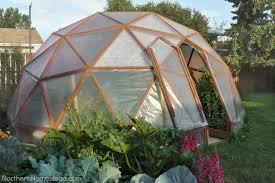 Best 25 Build A Greenhouse Ideas On Pinterest  Backyard Buy A Greenhouse For Backyard