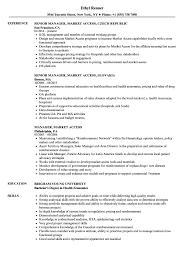Manager Market Access Resume Samples Velvet Jobs