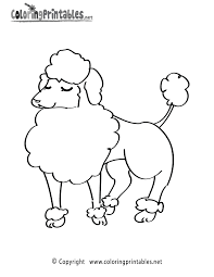 Small Picture Poodle Coloring Page A Free Animal Coloring Printable