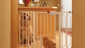 office pet ideas. Full Size Of Uncategorized:b Ie Utf8node Amazing 8 Foot Dog Gate Safstar Adjustable Freestanding Office Pet Ideas S