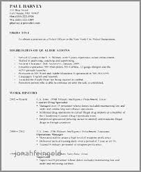Law Enforcement Resume Extraordinary Law Enforcement Resume Adorable Resume Profile Examples Law
