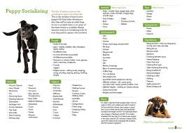 Kitten Socialization Chart Puppy Socialisation A Free Downloadable Checklist For You
