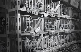 反斗奇兵4勁爆公爵勁爆笑 導演奇洛李維斯私底下都係咁香港01電影
