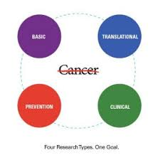 Translational Preventative Clinical Basic Science Cancer