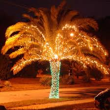 Christmas Palm Tree ... | Merry and Bright | Pinterest | Christmas ...
