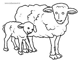 Pecorelle Disegni Per Bambini Da Colorare Unique 15 Disegni Di