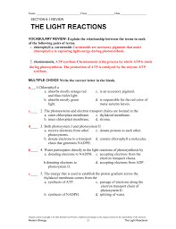 The Light Reactions Worksheet Review Akns Students Blogspot