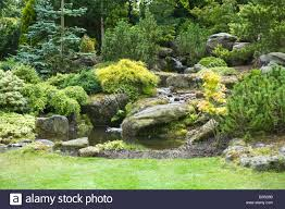 Design A Rock Rock Garden With Pond Waterfall Shrubs And Trees In Garden