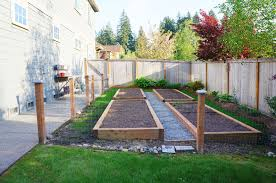 best starting vegetable garden how to start vegetable garden alices garden