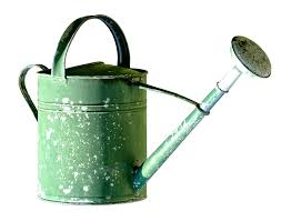 watering can pot garden casting irrigation green